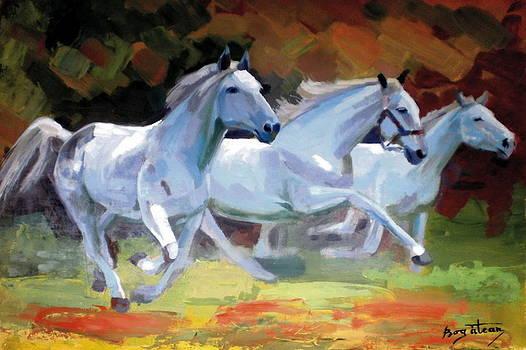 White Horses by Calin Bogatean