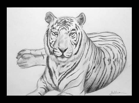 White Tiger  by Tinatini Popiashvili