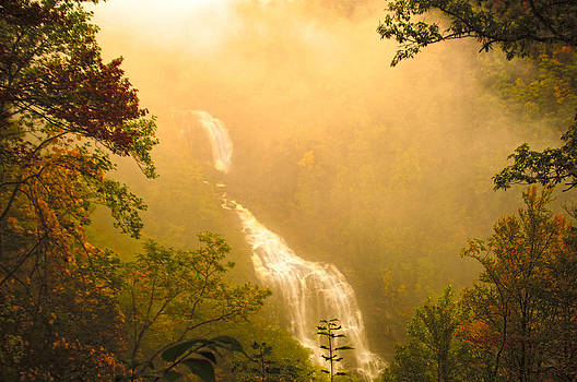 Whitewater Falls in the fog by Randall Branham
