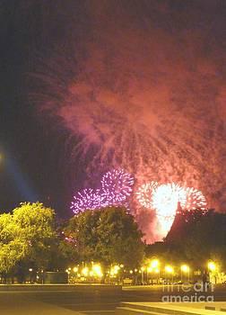 Why Fireworks by Alisa Tek