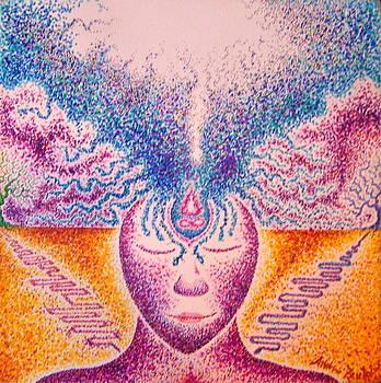Widen Your Vision by Andrew Zeutzius