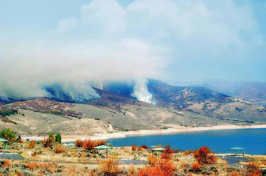 Wild Fires in Utah by Susan Leggett