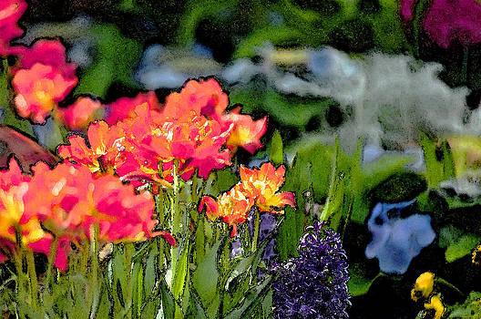 Wild Flowers by Michael Austin