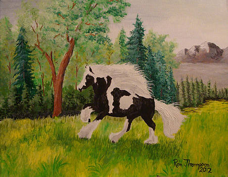 Wild Horse by Ron Thompson