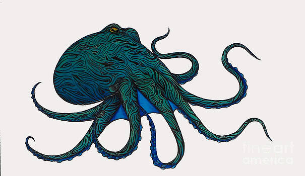 Wild Octopus by Holly Hunt