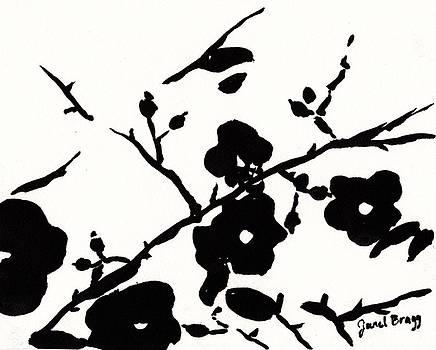 Wild Roses by Janel Bragg
