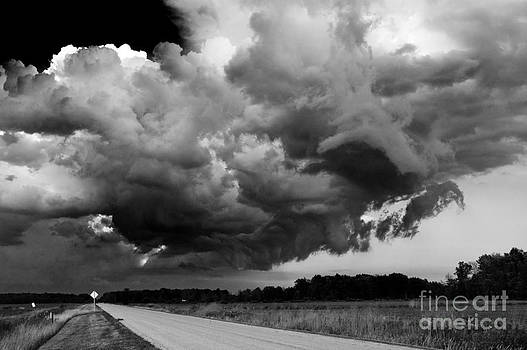 Wild Sky- Essex County Ontario by Mark Clifford