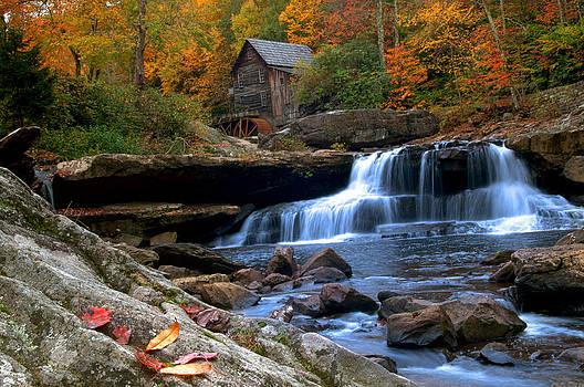 Randall Branham - wild wonderful WV Glade Creek
