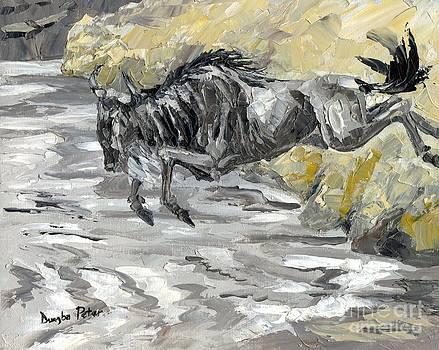 Wildebeest by Dumba Peter