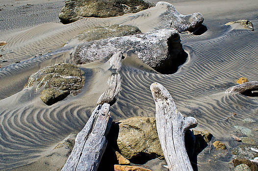 Wind Blown Sands by Jake Johnson