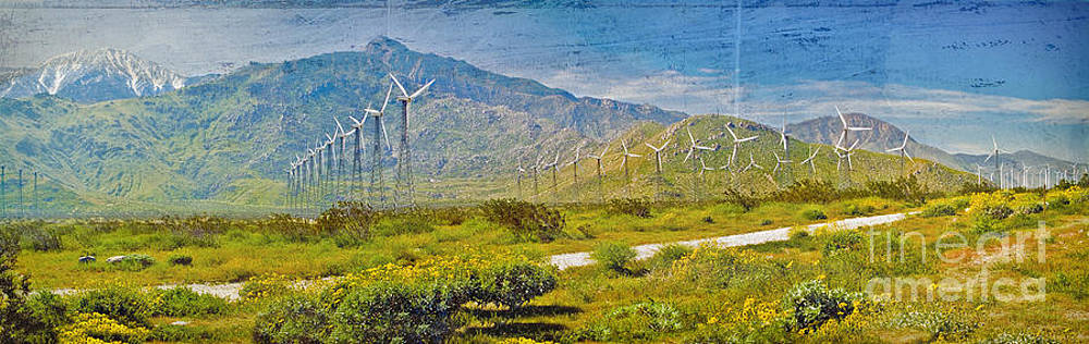 David  Zanzinger - Wind Turbine Farm Palm Springs CA