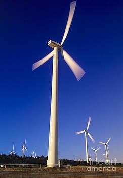Wind Turbines by David Nunuk