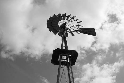 Wind Vane 101 by Anthony Wilder