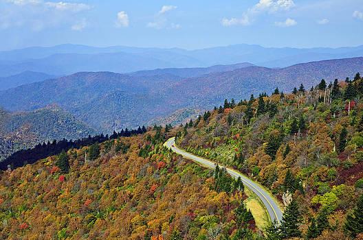 Winding Road by Susan Leggett