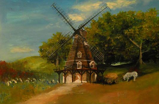 Windmill by Nicu Alina