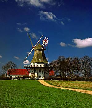 Steve Harrington - Windmill