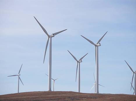 Windmills by Jessica Jandayan