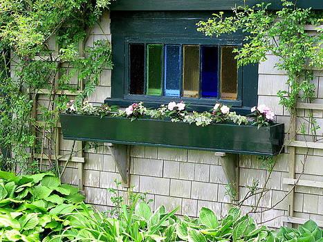 Window Box by Julia Jones