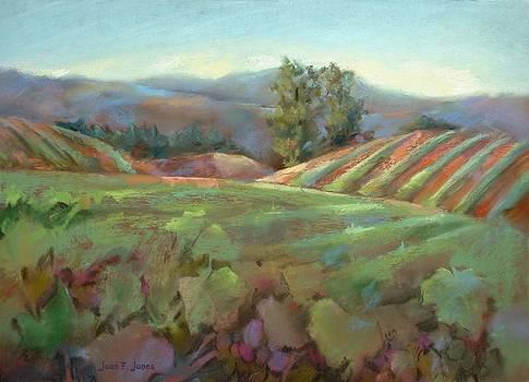 Joan  Jones - Wine Country