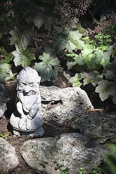 Teresa Mucha - Winking Garden Gnome