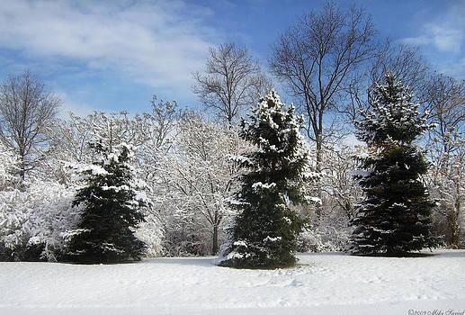 Mike Savad - Winter - Landscape - The three tenors