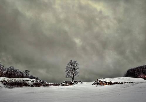 Evelina Kremsdorf - Winter Blues