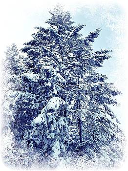Marilyn Wilson - Winter Dusting - Card only