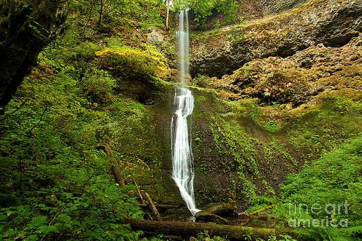 Adam Jewell - Winter Falls