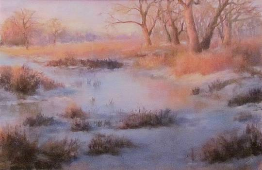 Winter Marsh Series- Fire and Ice by Bill Puglisi