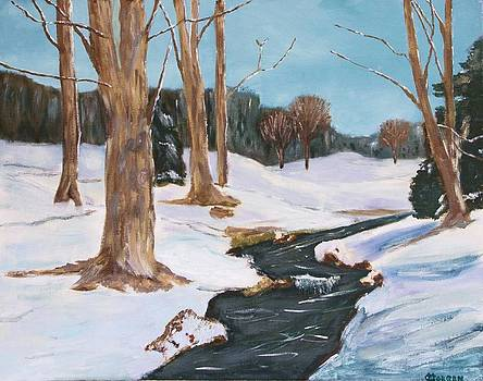Winter Solitude by Cynthia Morgan