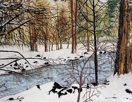Winter Spring by Seth Corda