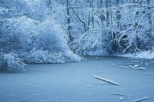 Charmian Vistaunet - Winter Wonderland