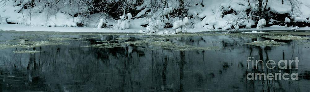 Linda Knorr Shafer - Wintergreen