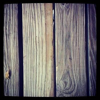 Wood by Safa Al-Rubaye