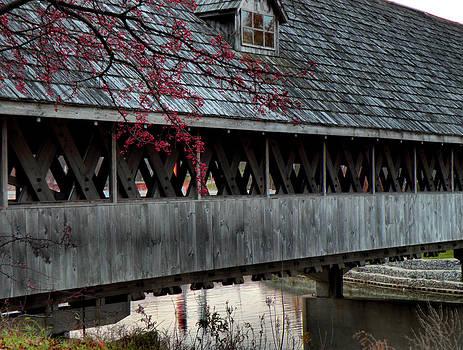 Scott Hovind - Wooden Bridge