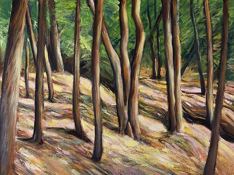 Woods by Jack Tzekov