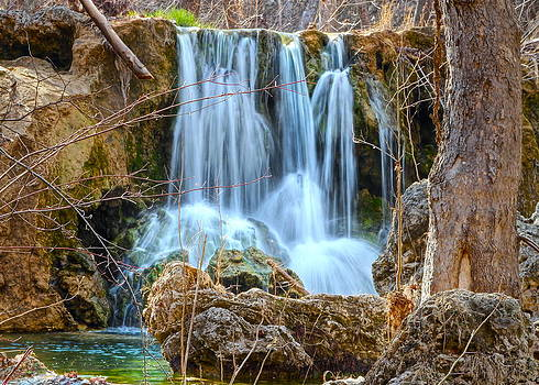 Woodsy Waterfall by Terry Hollensworth-Rutledge