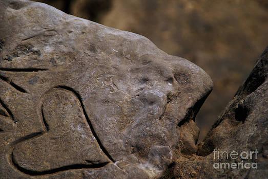 Linda Knorr Shafer - Written In Stone