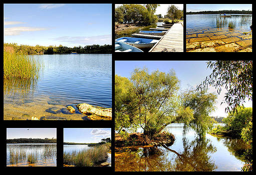 Yanchep National Park Collage by Imagevixen Photography