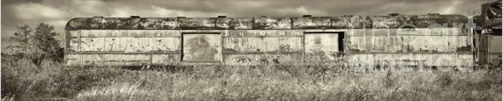 Southern Past by Juan Alonso