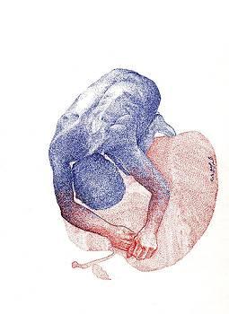 Apel by Ahmad Subaih