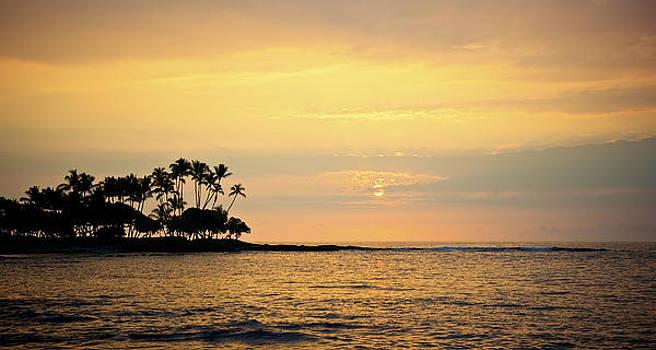 Golden Sunset by Jen Morrison