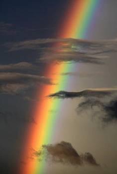 Rainbow Islands by J Vincent Scarpace