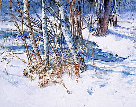 A Snowy Knoll by June Conte  Pryor