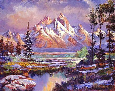 Breaking Winter Sunlight by David Lloyd Glover
