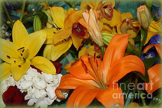 Day Lilies and Spring Blossoms by Photographic Art and Design by Dora Sofia Caputo