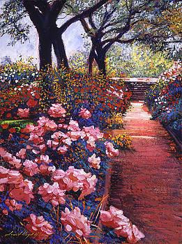 David Lloyd Glover -  ENGLISH TEA ROSES