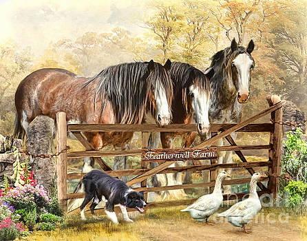 Featherwell Farm by Trudi Simmonds