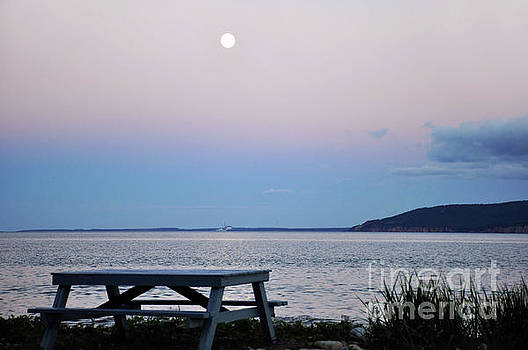 Full Moon by Elaine Manley