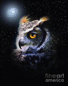 Galaxy Owl by Robert Foster